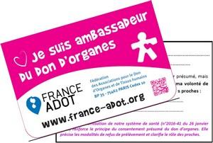 Carte-Ambassadeur-2017-300
