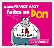 Admin_Ille-et-Vilaine